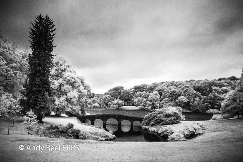 Easy Steps For Setting IR Black and White Points in Lightroom